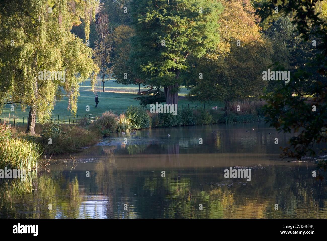 Autumn trees pond landscape scene on Hampstead Heath Stock Photo
