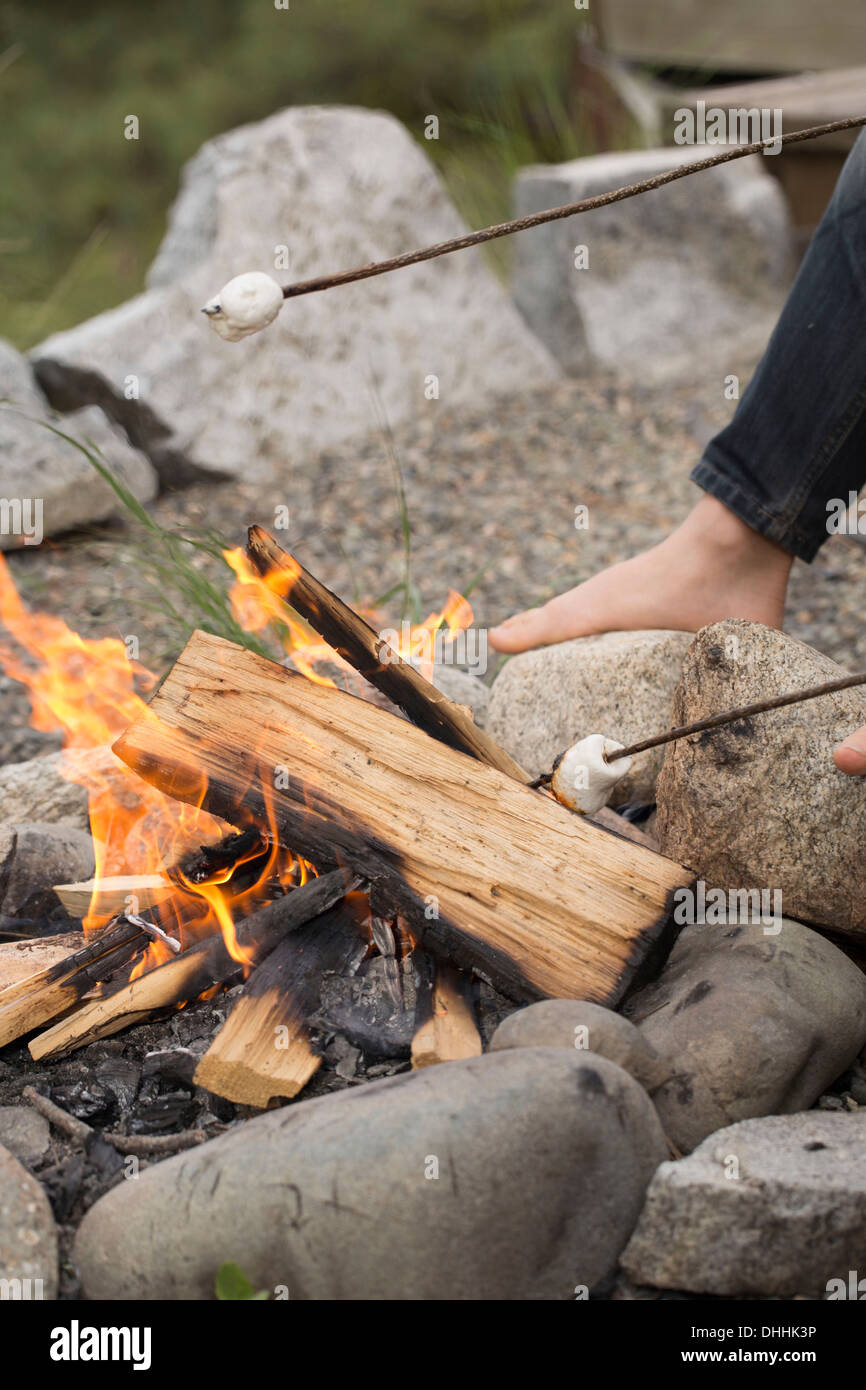 Cropped shot of boy's arms toasting marshmallows over campfire - Stock Image