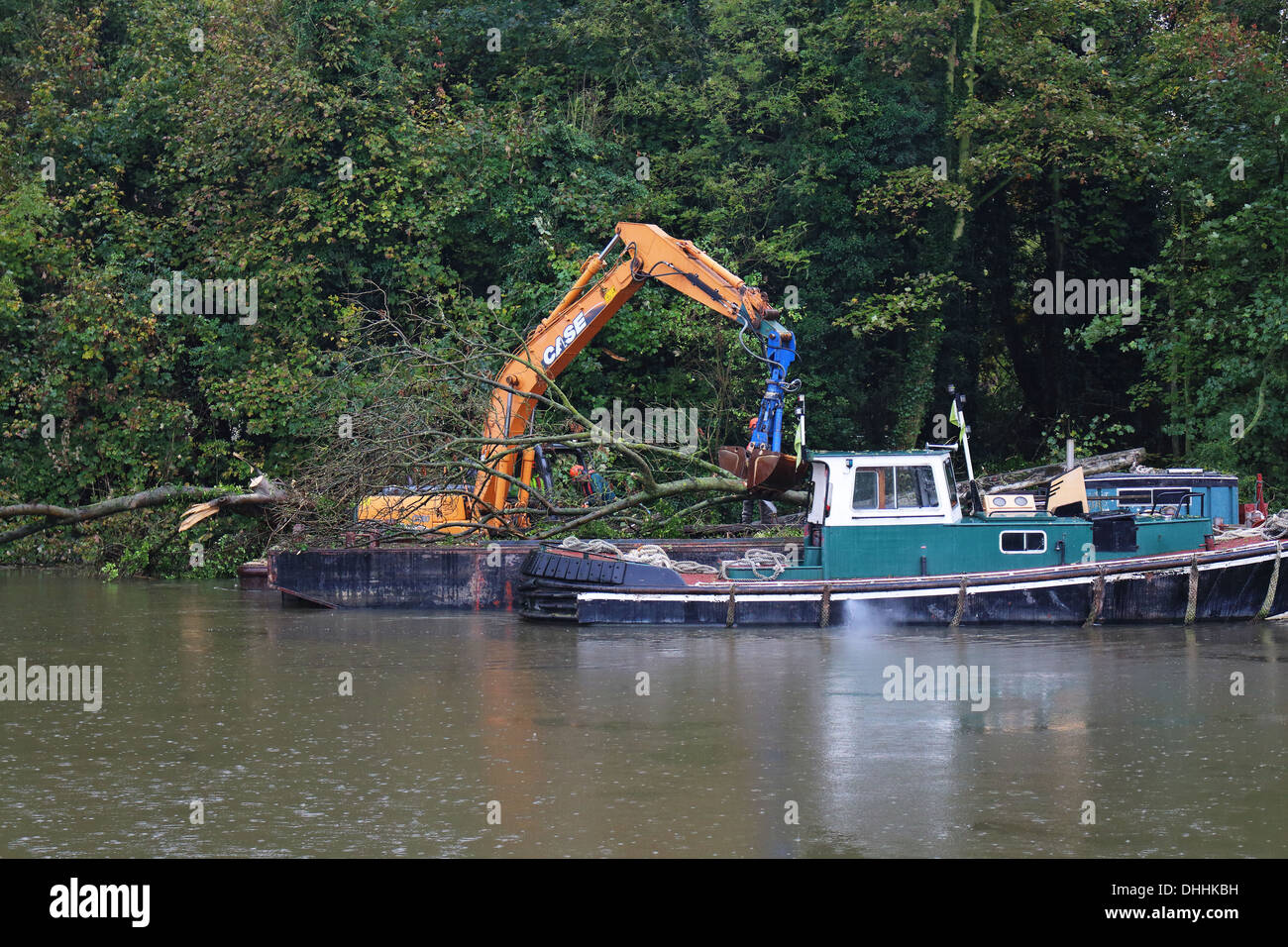 Maintenance work on the River Thames, removing fallen trees after storm damage - Stock Image