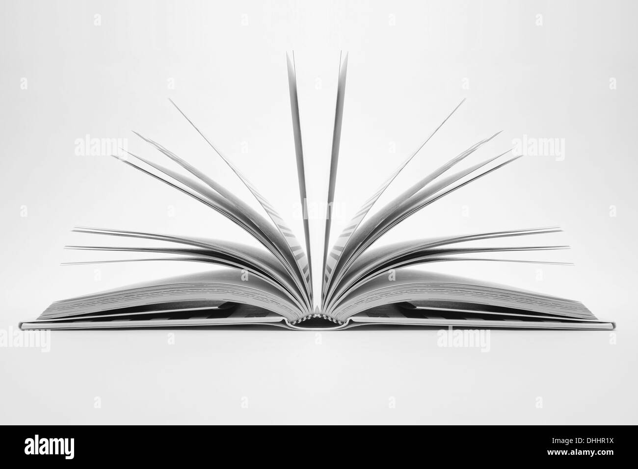 Pages in open book - Stock Image