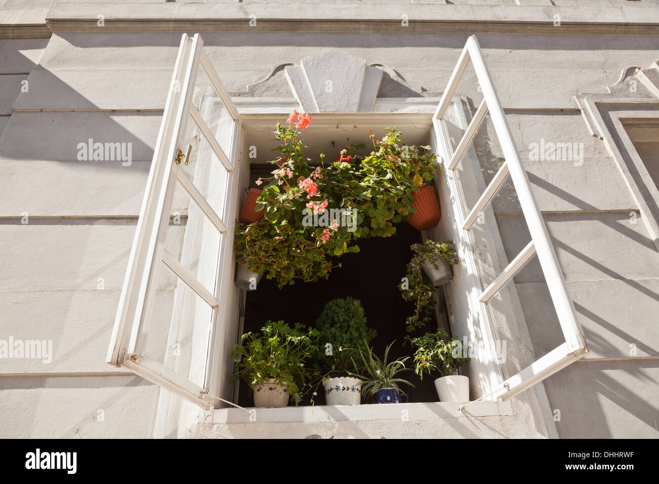 Open window with potted plants, old town of Prague, Czech Republic - Stock Image