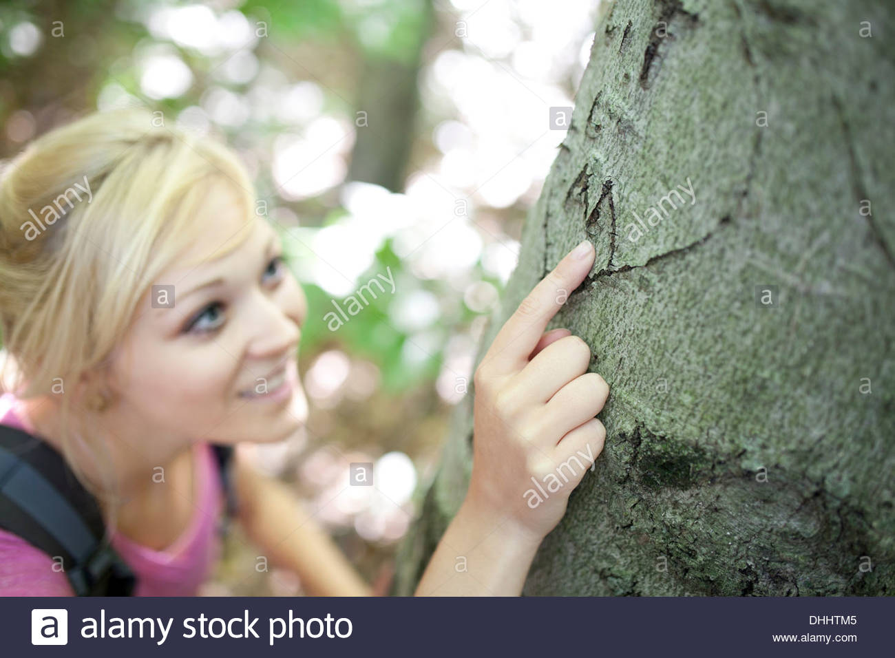 Woman in forest looking at carving in tree bark - Stock Image
