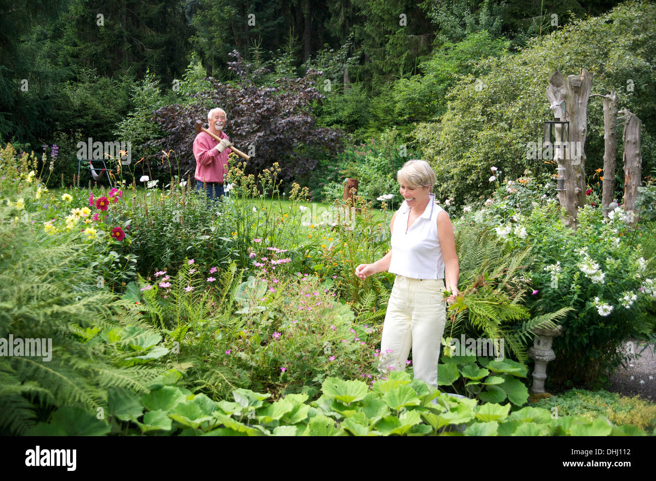 Portrait of senior couple working in garden - Stock Image
