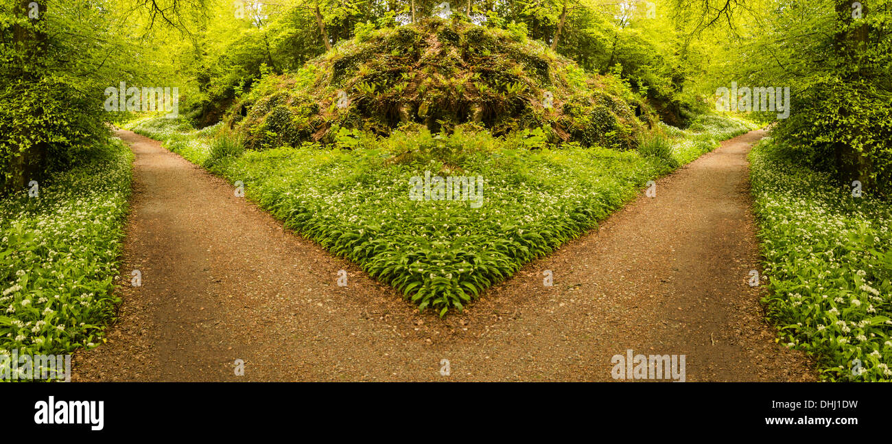 Path leading in two different directions. Choices / decisions concept. - Stock Image