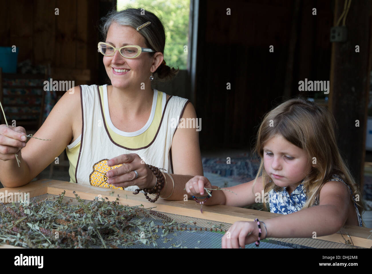 Mother and daughter sorting dried herbs - Stock Image