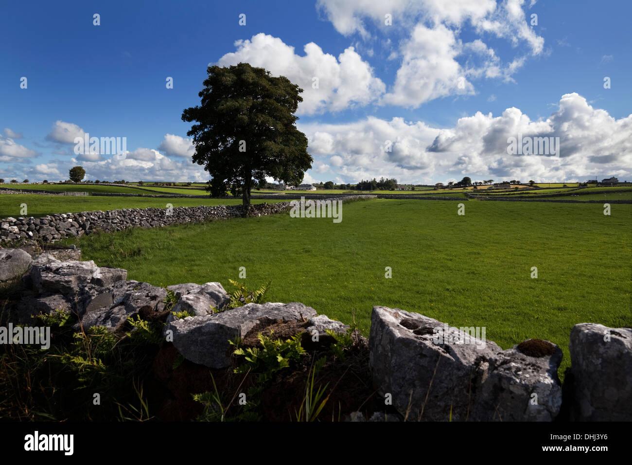 Pastoral farmland between Clonbur and Ballinrobe, County Mayo, Ireland - Stock Image