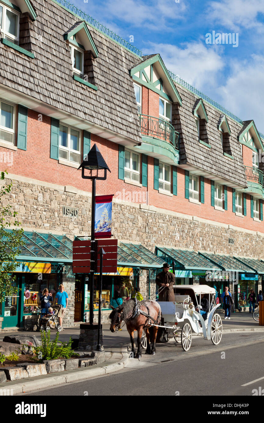 A horse drawn carriage tour of Banff  on Banff Avenue Banff town Banff National Park Alberta Canada - Stock Image