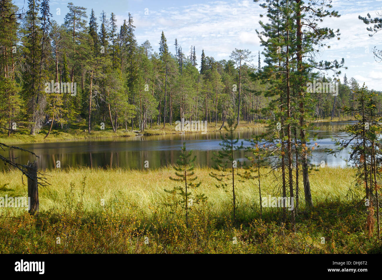 Beautiful Finnish HDR landscape in wilderness with lake and trees - Stock Image