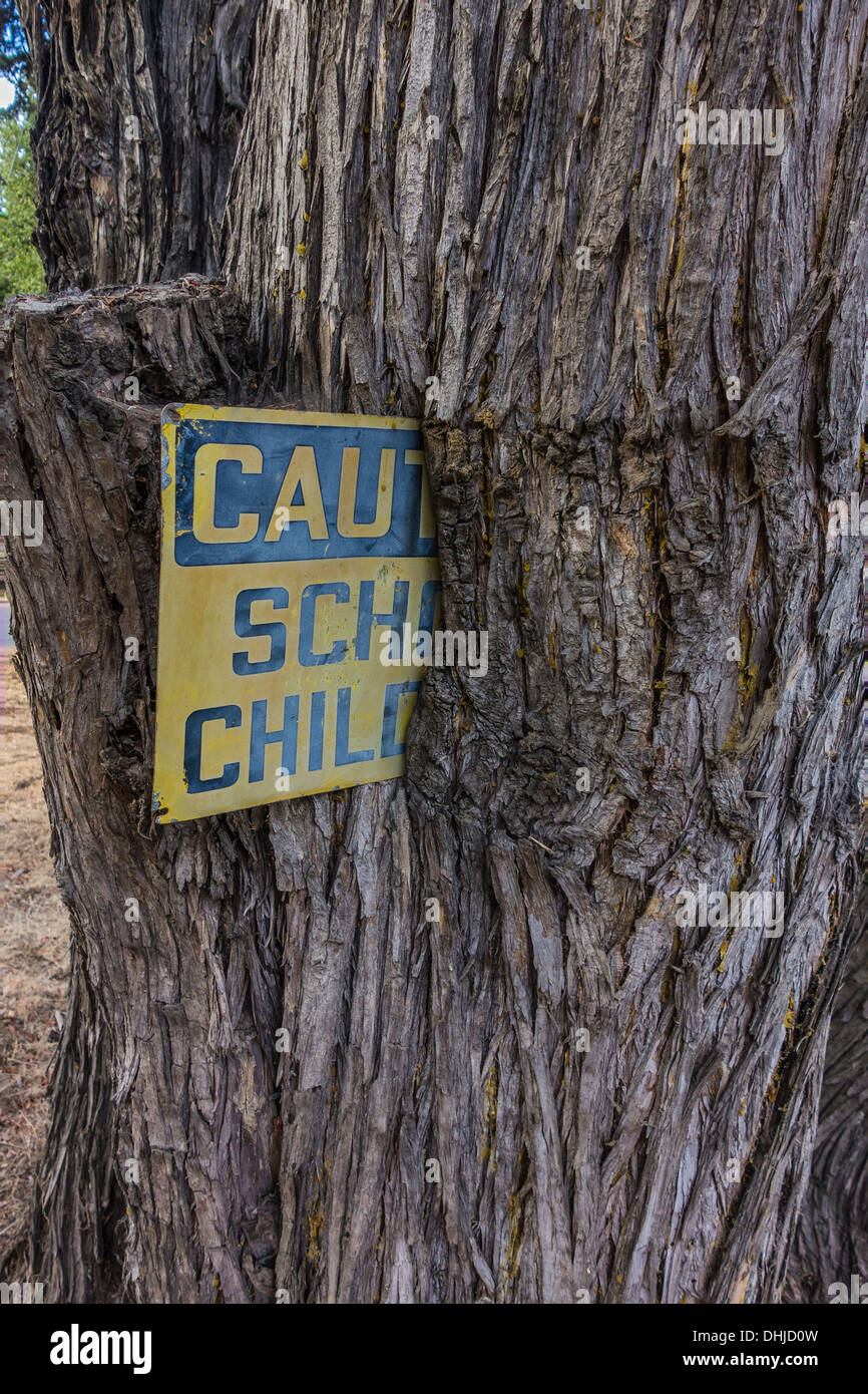 Rusted 'Caution School Children' sign that a tree has grown around Santa Barbara County, California, USA. - Stock Image