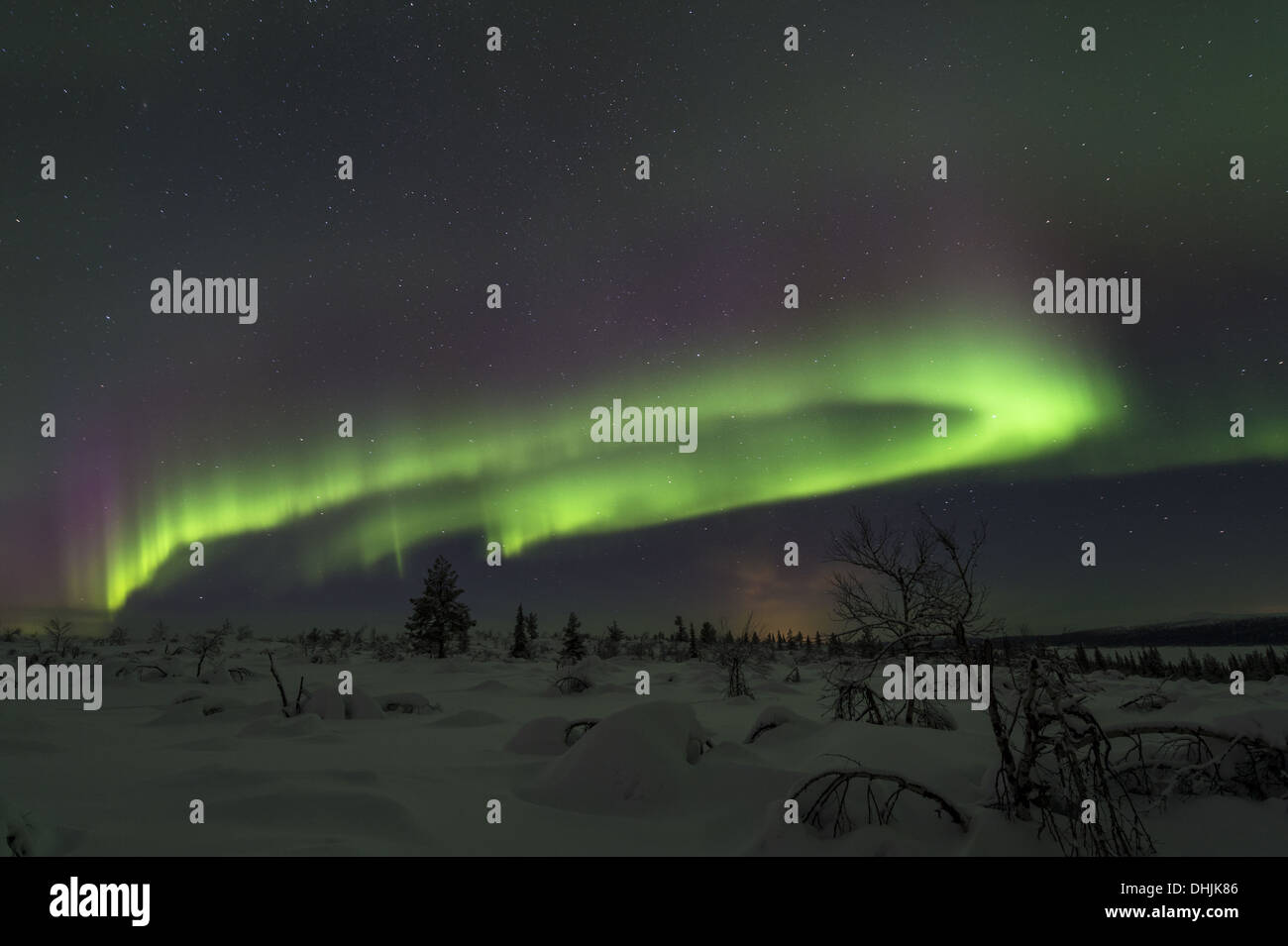 Northern lights (Aurora borealis), Sweden - Stock Image