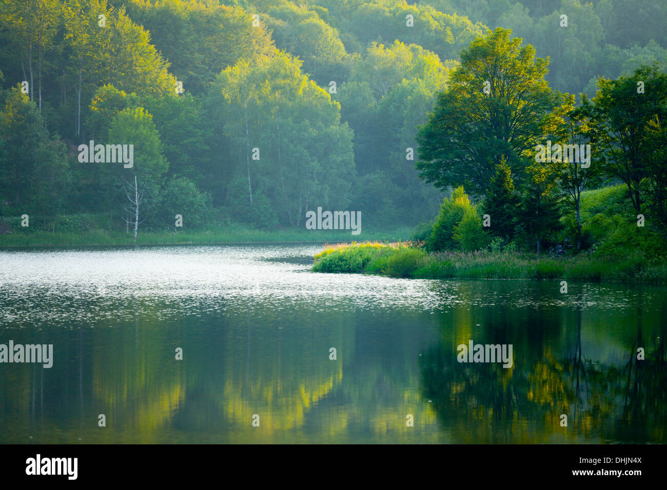 Serene lake coastline peaceful serene serenity Stock Photo