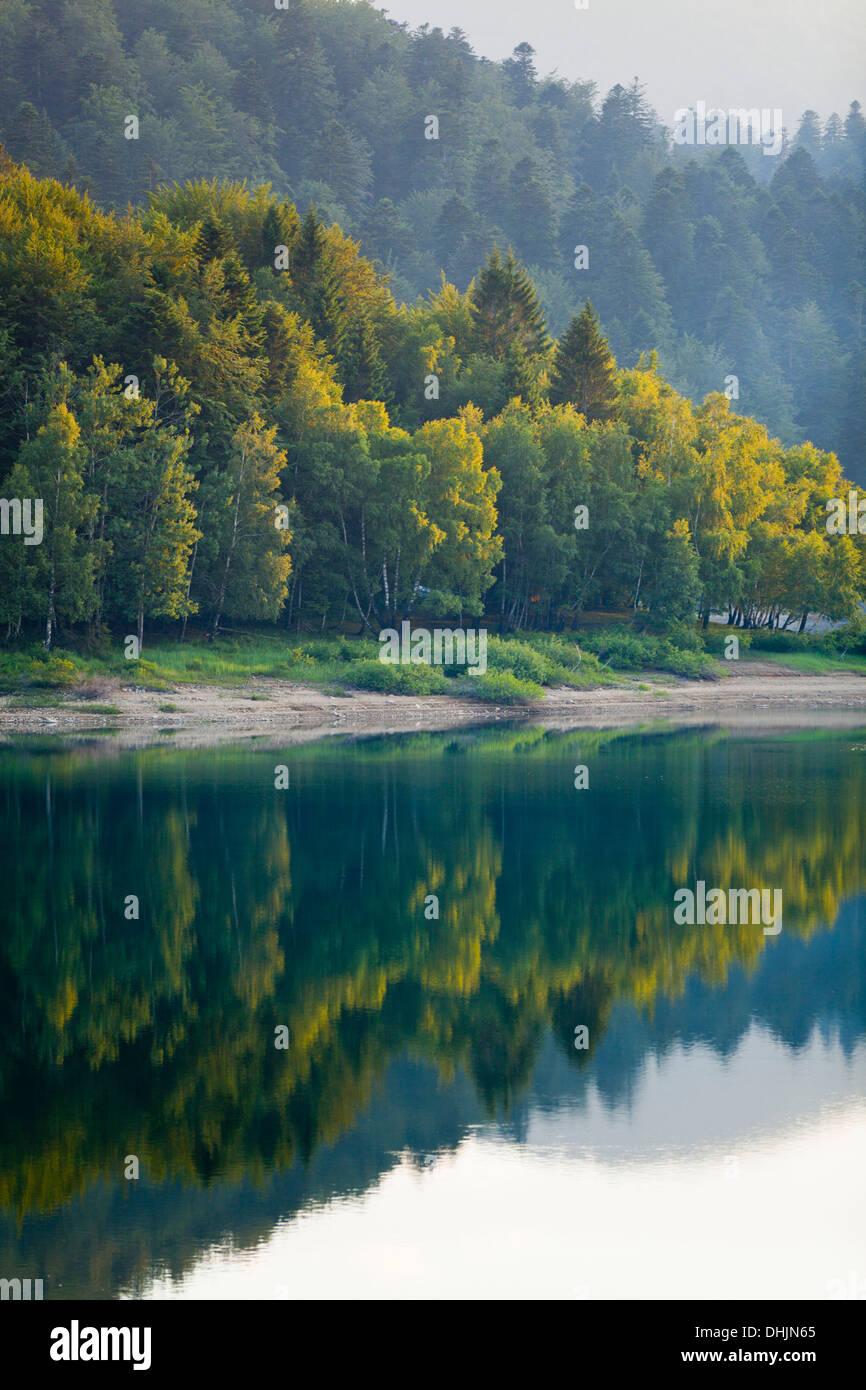 Serene lake coastline Stock Photo