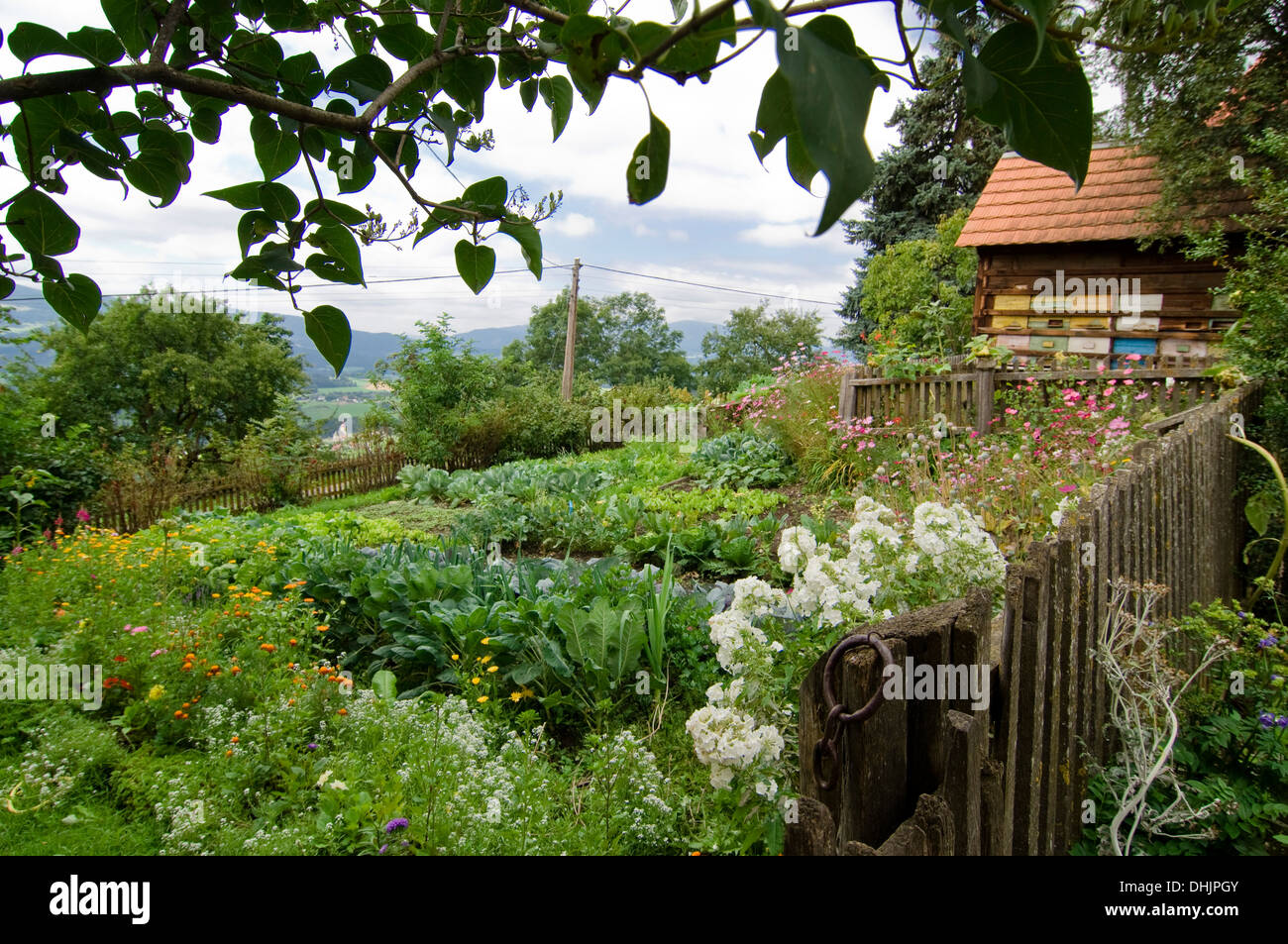 Cottage garden with beehives, Styria, Austria - Stock Image