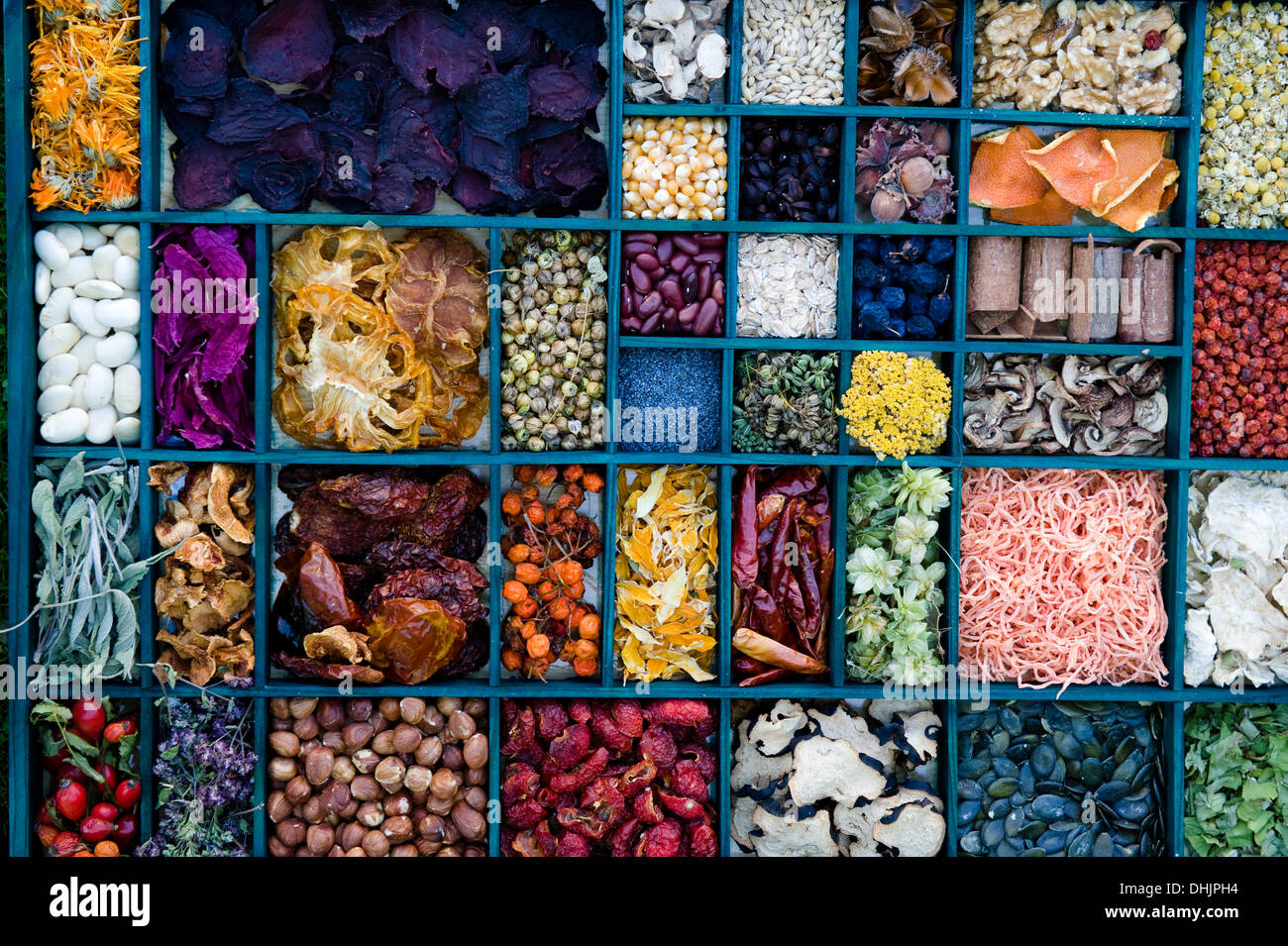 Dried flower blossoms, herbs and grains, food drying, desiccated food, homemade - Stock Image