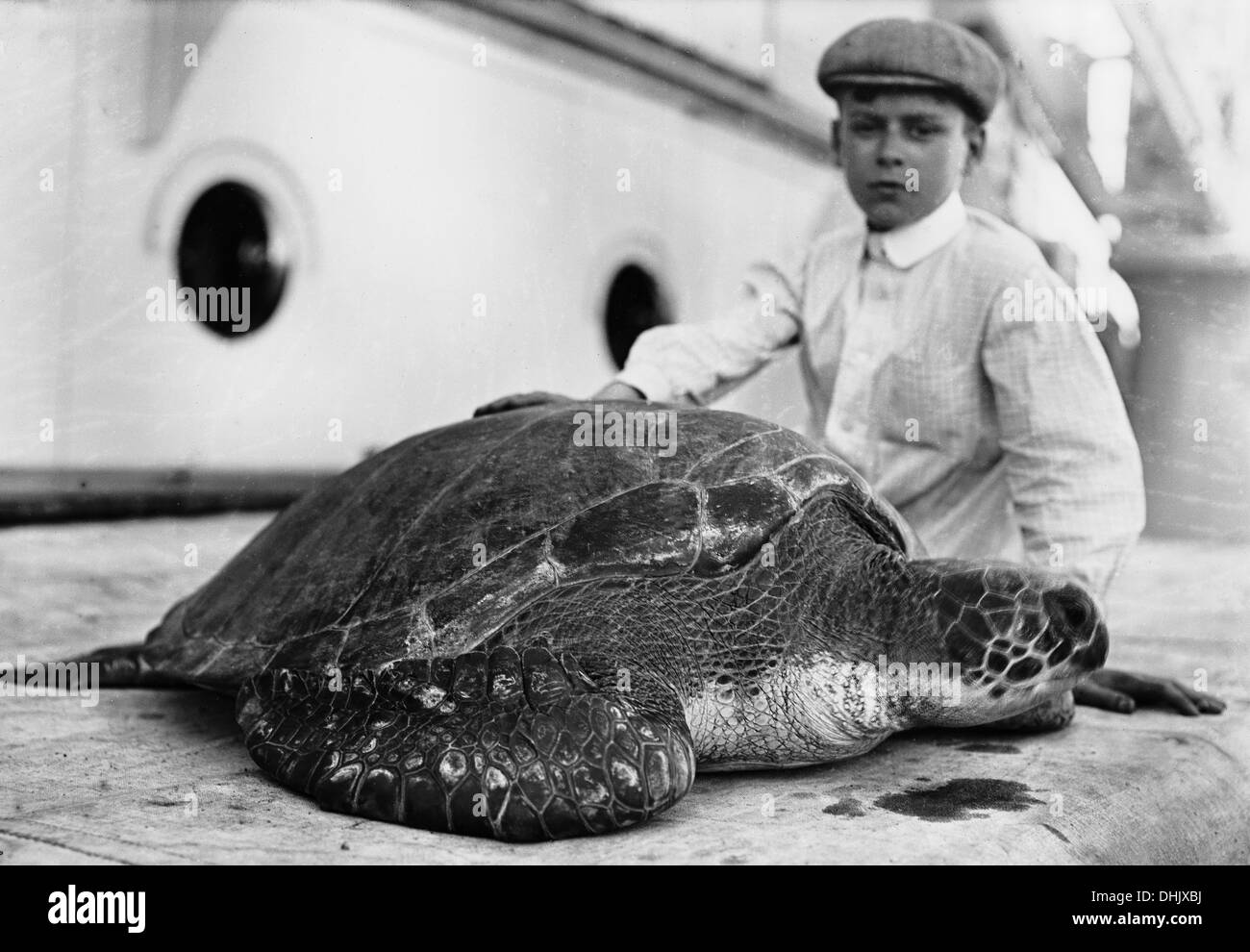 Venezuela. A boy with a turtle is pictured aboard a transatlantic passenger ship in Venezuela, around 1910. The image was taken by the German photographer Oswald Lübeck, one of the earliest representatives of travel photography and ship photography aboard passenger ships. Photo: Deutsche Fotothek/Oswald Lübeck - Stock Image