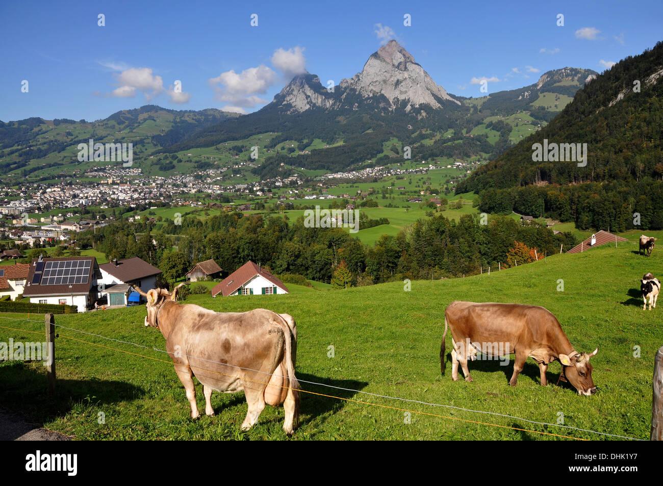 View of the village of Schwyz from south, Canton Schwyz, Centralswitzerland, Switzerland, Europe - Stock Image