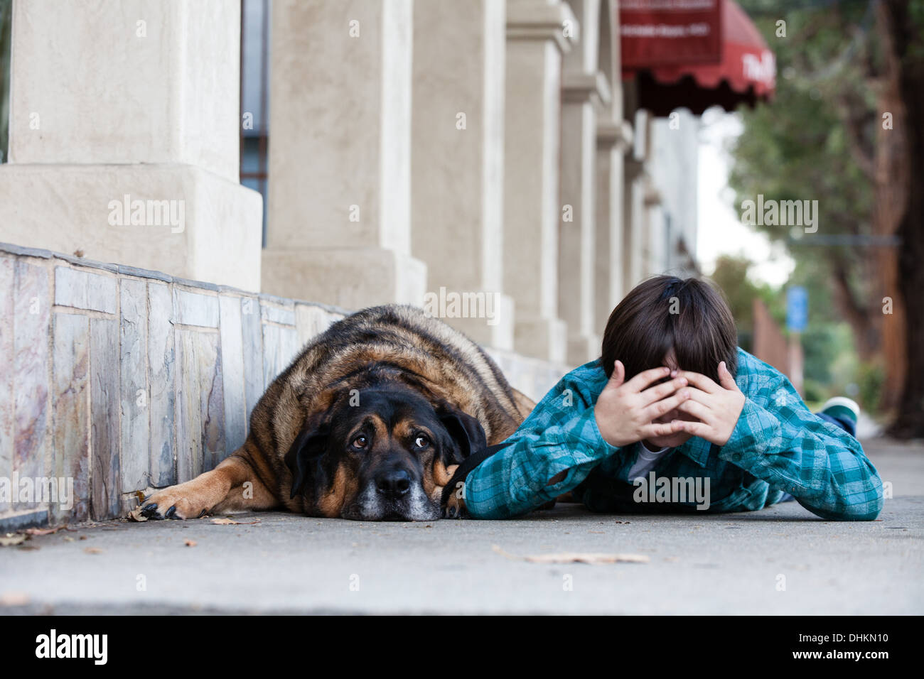 A 10 year old boy and his dog lying down on the sidewalk playing hide and seek - Stock Image