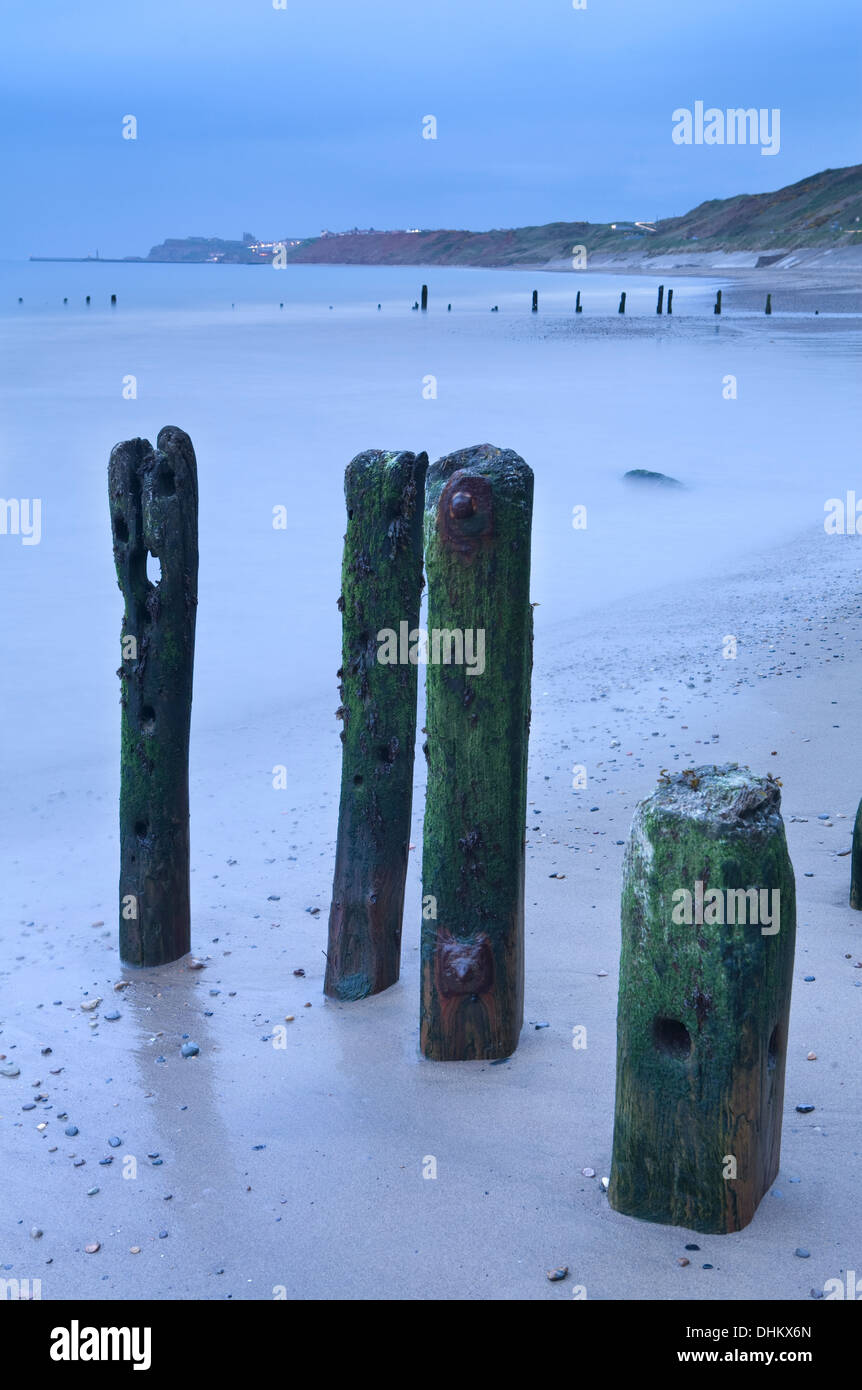 Groynes at Sandsend at dusk with Whitby in the distance Stock Photo