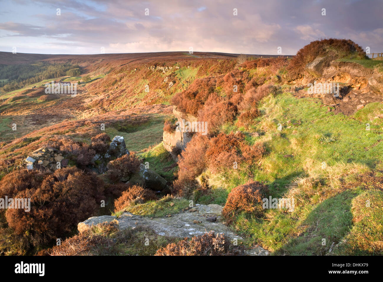 Botton, North York Moors, North Yorkshire, at sunrise. Stock Photo
