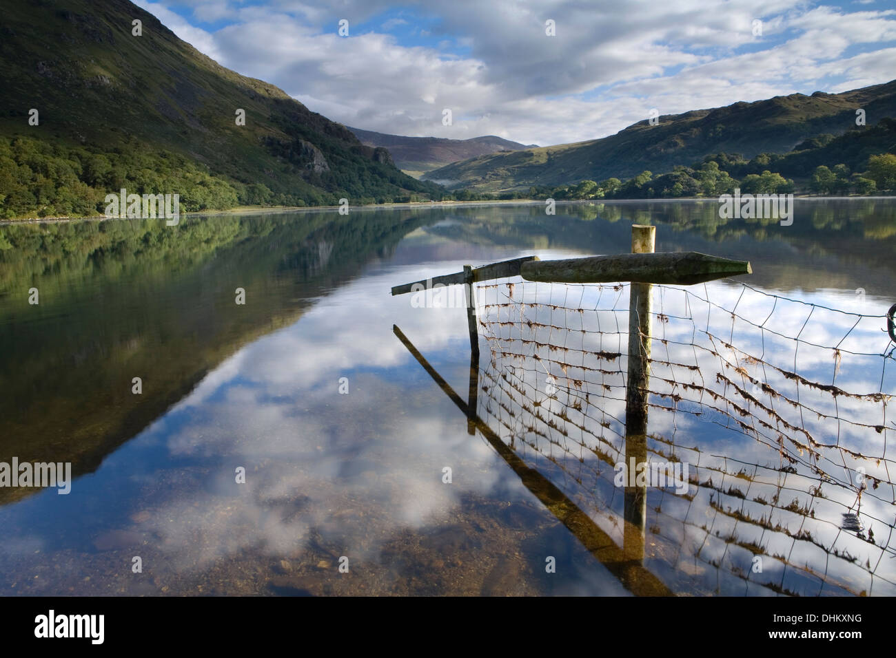 A fence and reflection going into Llyn Gwynant. The mist rising over the lake partially obscures Gallt y Wenallt, Stock Photo