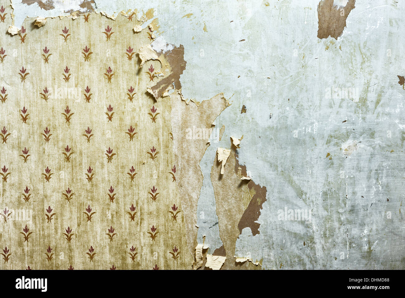 Wallpaper peeling off a wall during home decoration. Image could also suggest disuse or dilapidation, renovation, improvement - Stock Image