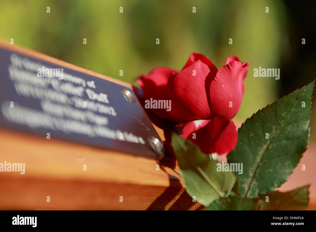 Remembrance Day - Stock Image