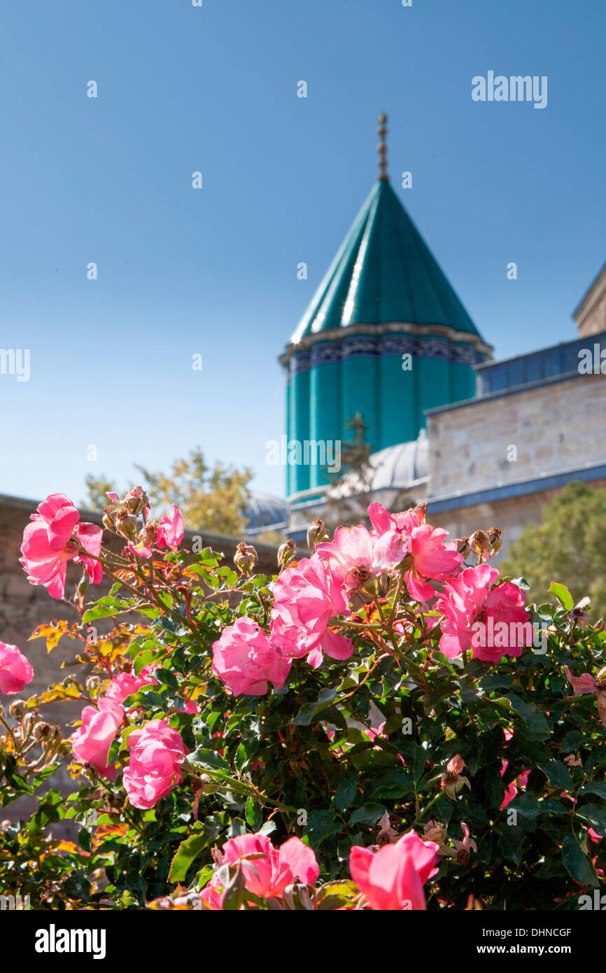 View of roses and minarets at the Mevlana Museum, historic centre of the  Whirling Dervishes in Konya, Turkey. - Stock Image