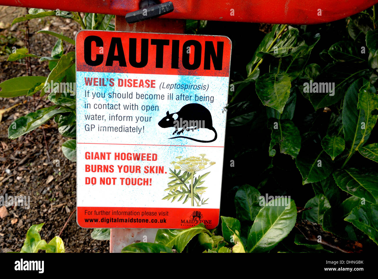 Sign warning of Weil\'s Disease (Leptospirosis) and Giant Hogweed by ...