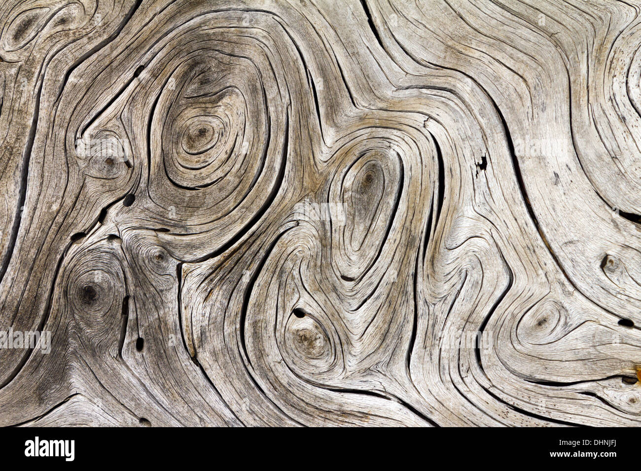 Wooden Swirls Organic Background Texture - Stock Image