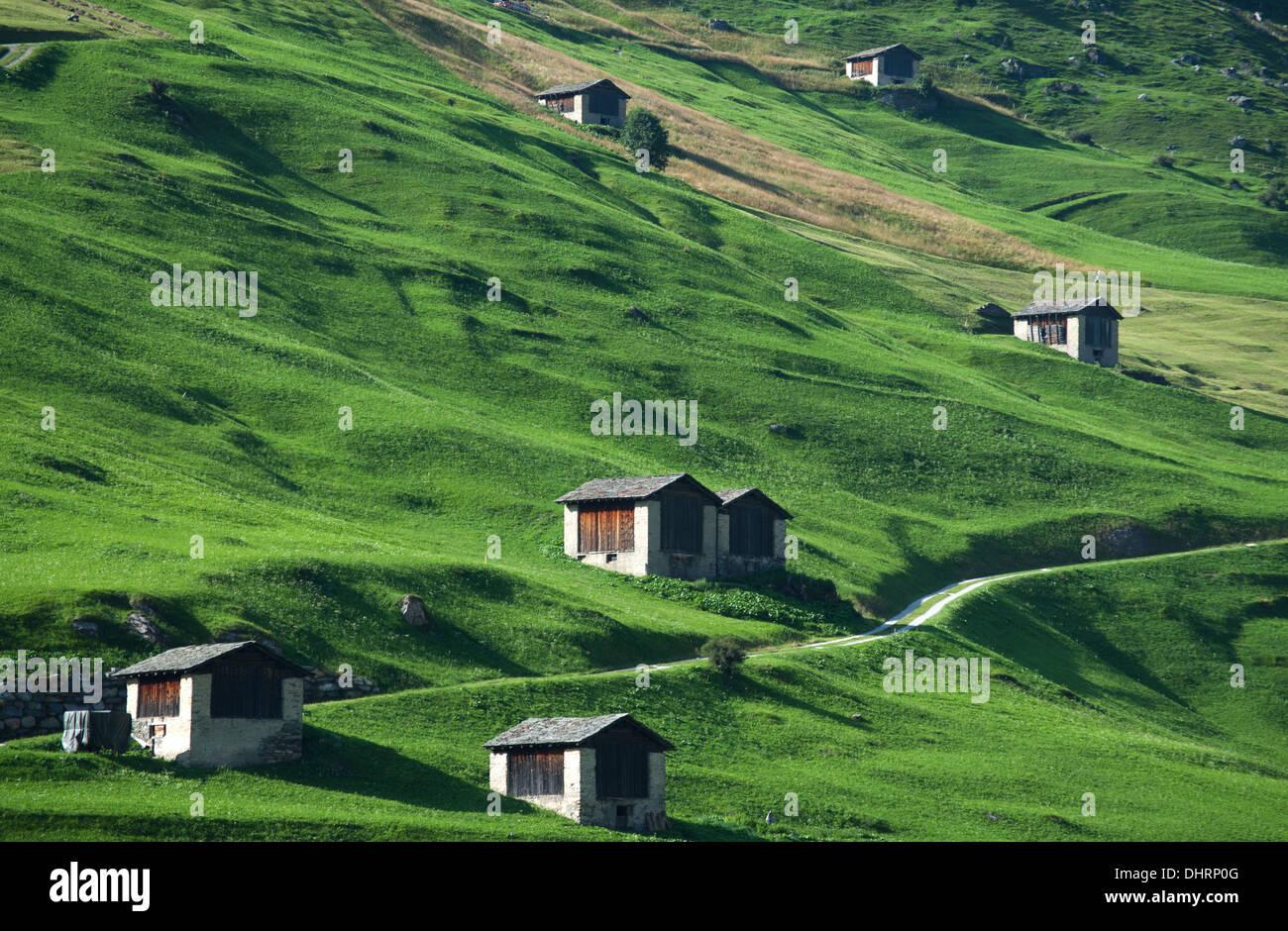 Hey barns on alpine hillside at Vals, Graubuenden, Switzerland Stock Photo