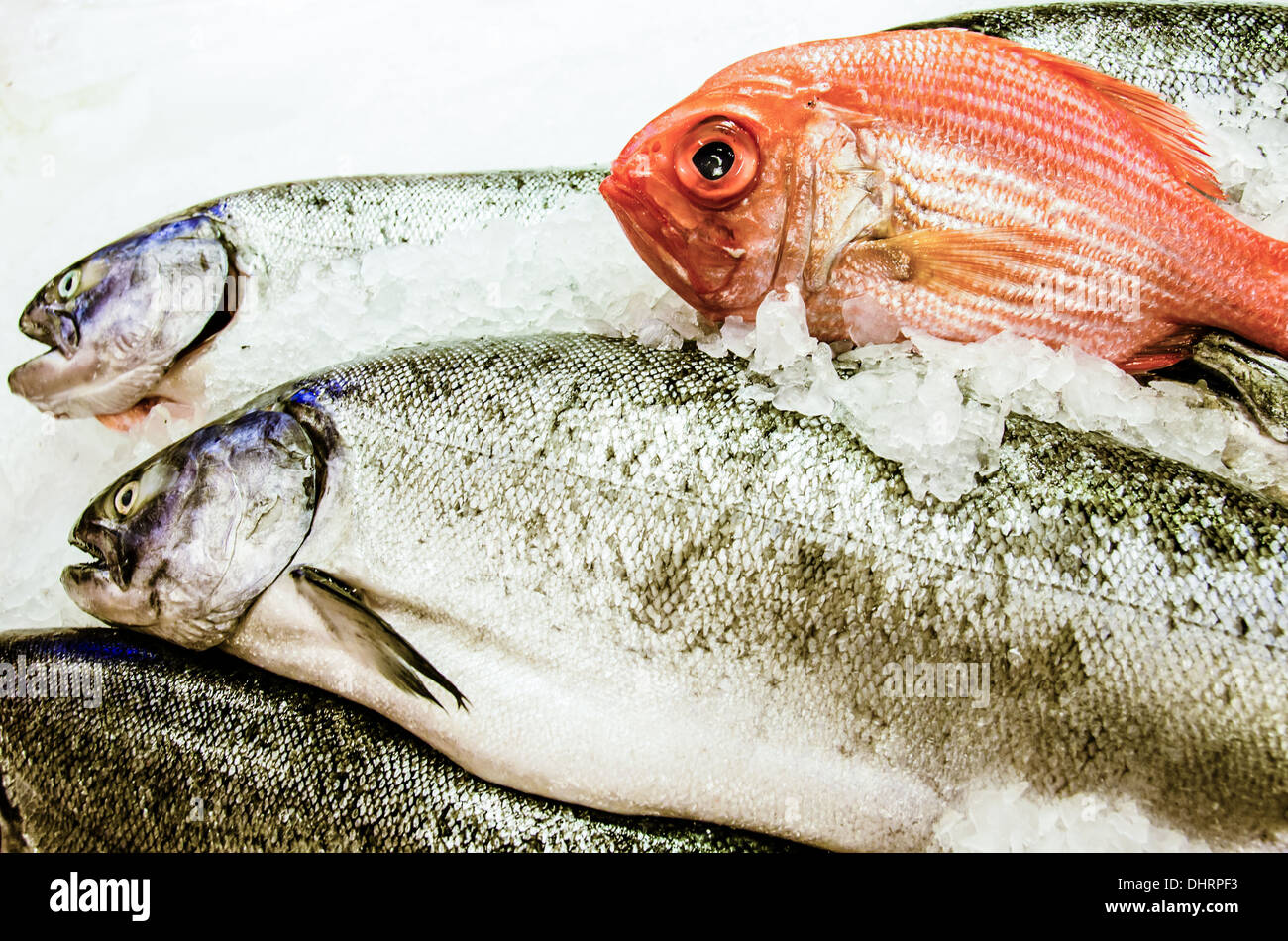 Close-up of fresh fish on a bed of ice for sale including red snapper. Stock Photo