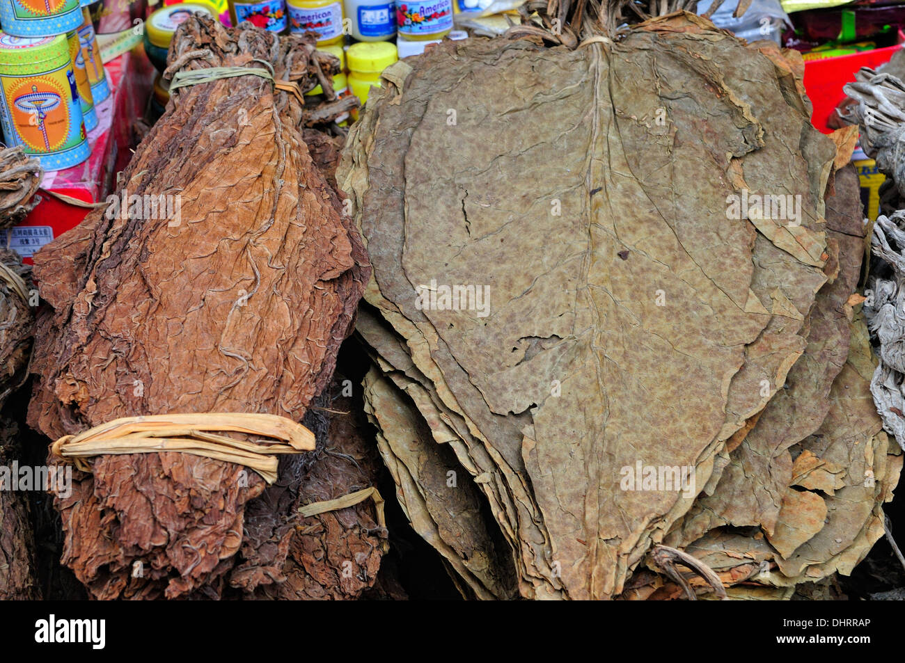dry tobacco leaves Lhasa at the market - Stock Image