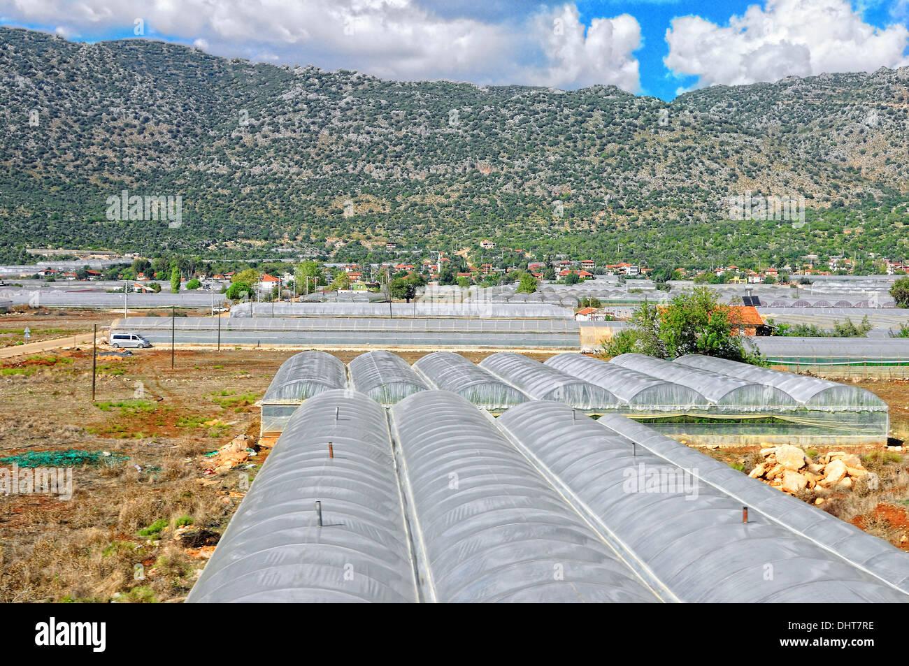 Greenhouses Turkey - Stock Image