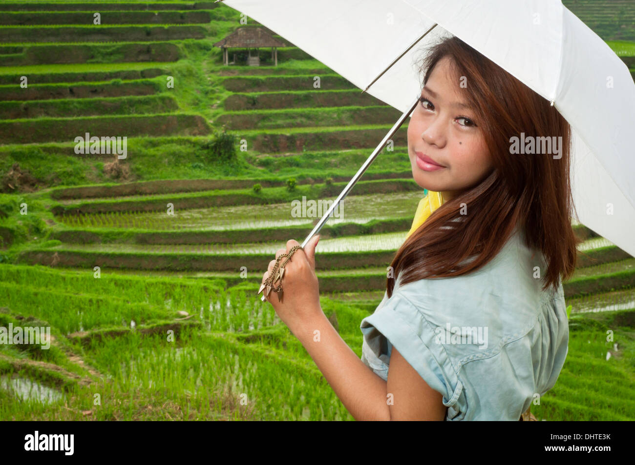 Photo of young employees in rice fields green outdoor. - Stock Image