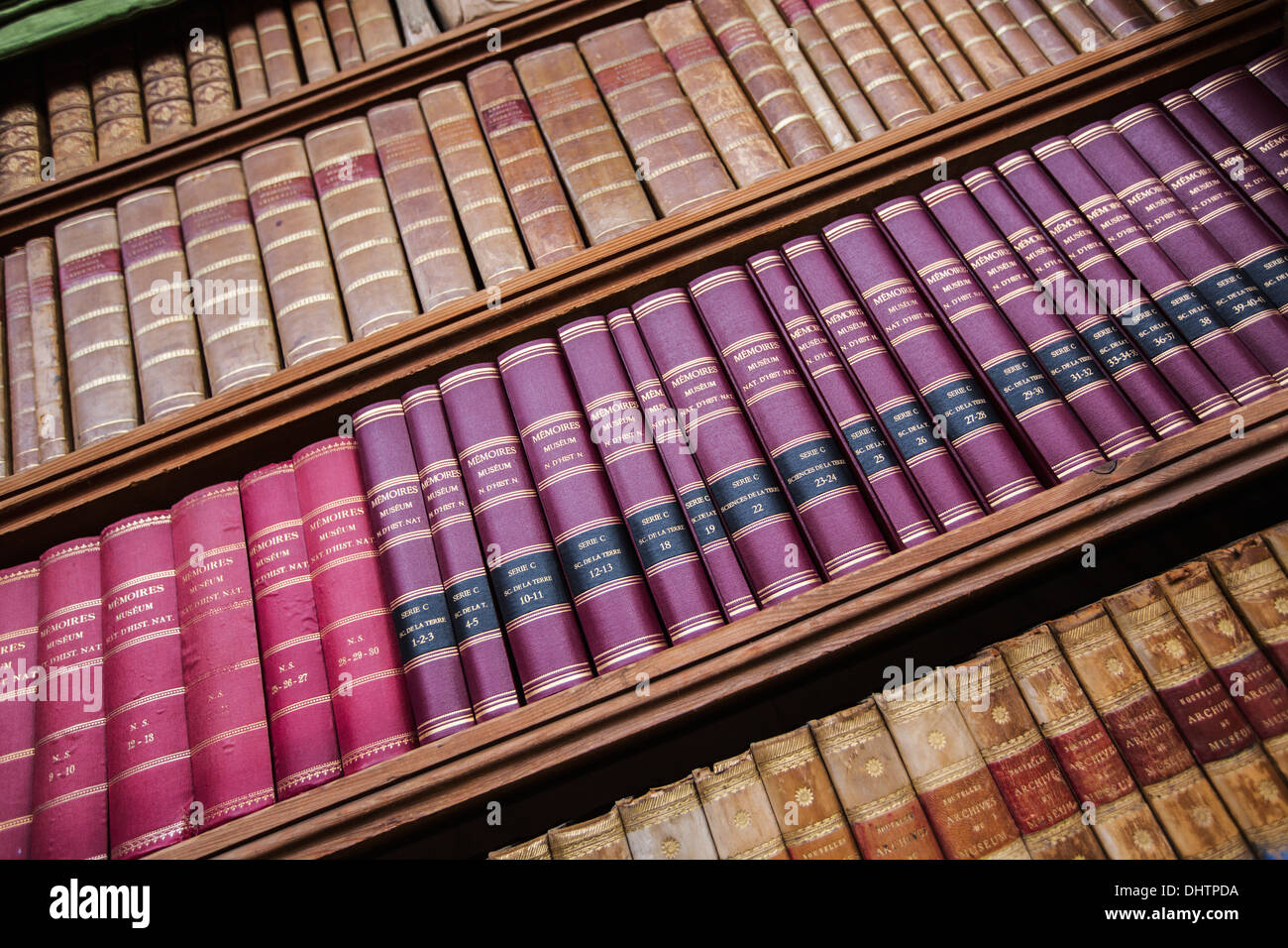 Netherlands, Haarlem, Teylers Museum, open to the public since 1784. View on bookshelves in the oval room - Stock Image