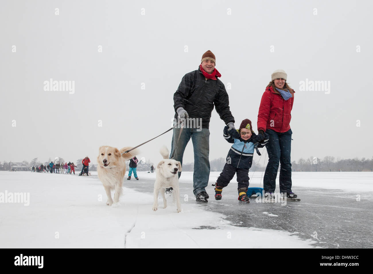 Netherlands, Loosdrecht, Lakes called Loosdrechtse Plassen. Winter. Family ice skating with dogs - Stock Image
