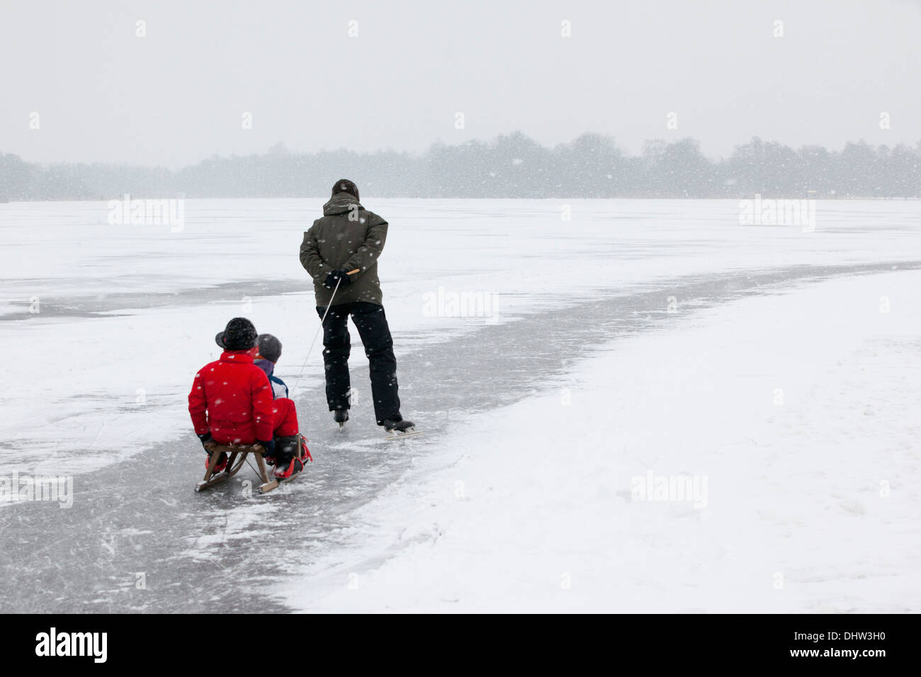Netherlands, Loosdrecht, Lakes called Loosdrechtse Plassen. Winter. Father ice skating with sons on sledge - Stock Image