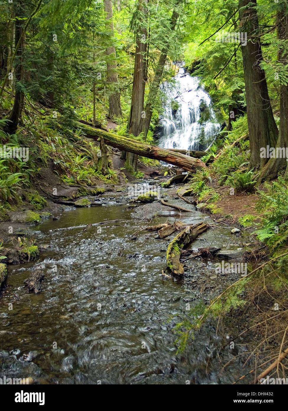 Cascade Falls,Moran State Park,Orcas Island, Washington State - Stock Image