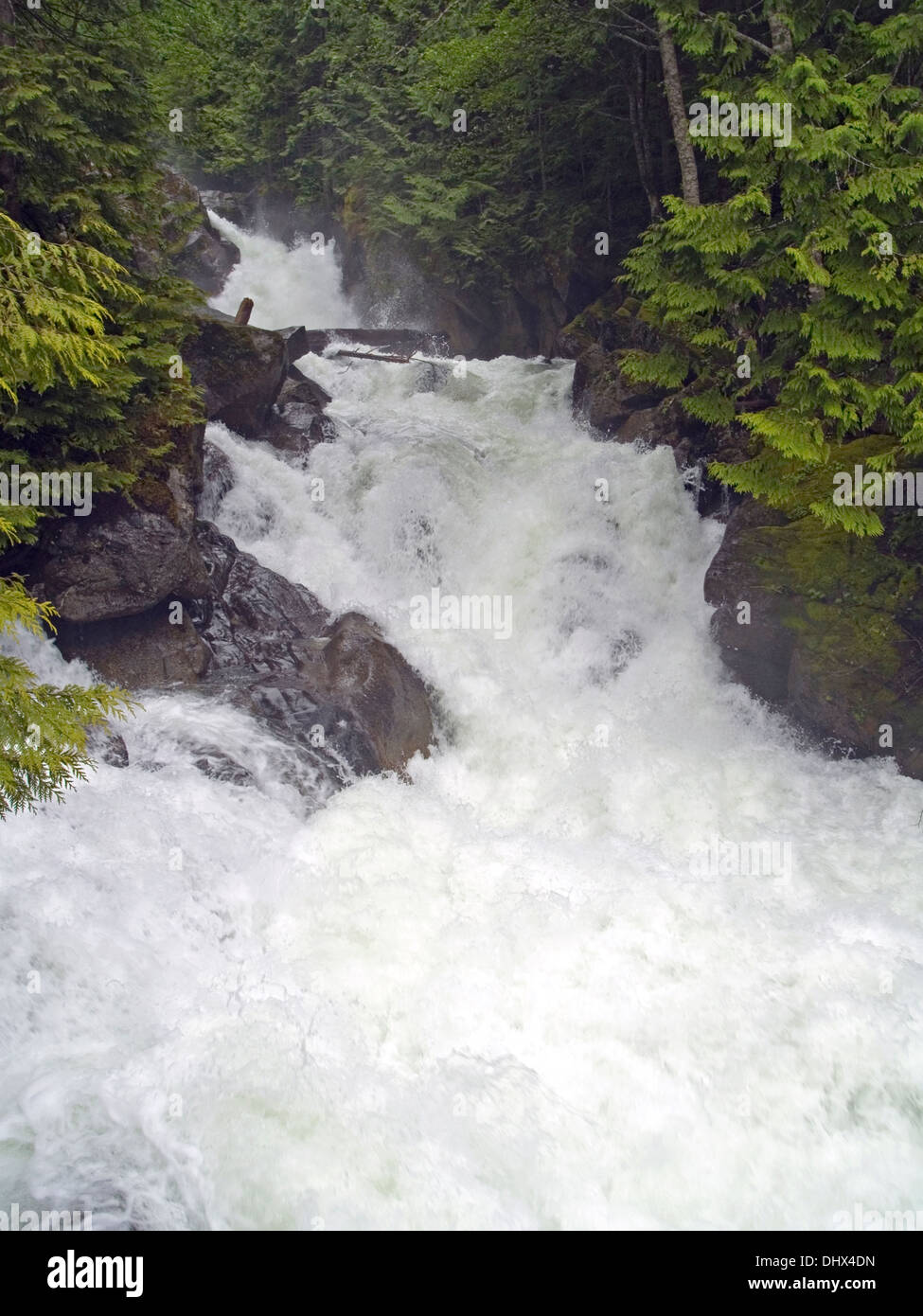 The raging Deception Falls on the Cascade Loop,Washington State - Stock Image