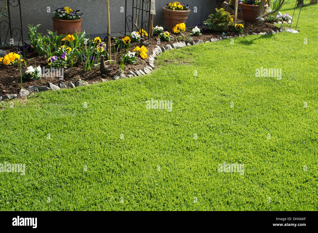 Lawn - Stock Image
