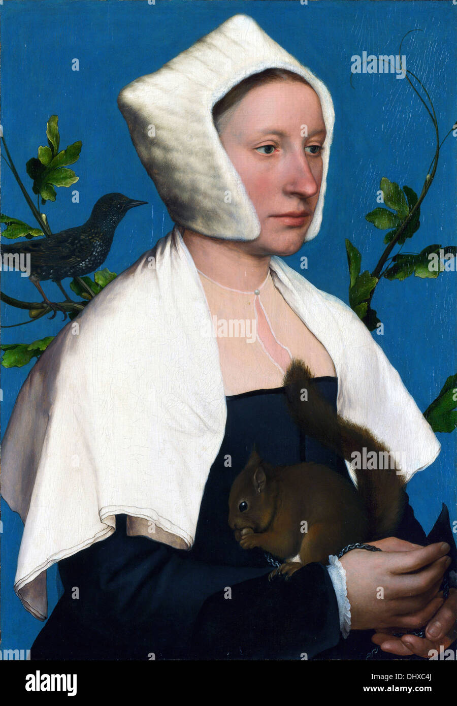 Lady with Squirrel and Starling - by Hans Holbein the Younger, 1528 - Stock Image