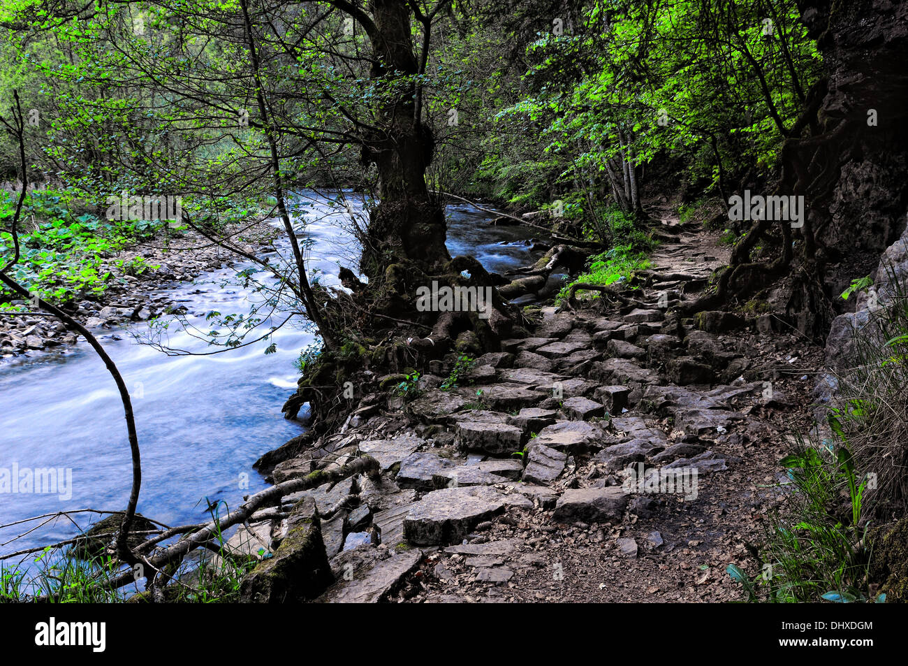 Trail Wutachschlucht Black Forest of Germany, - Stock Image