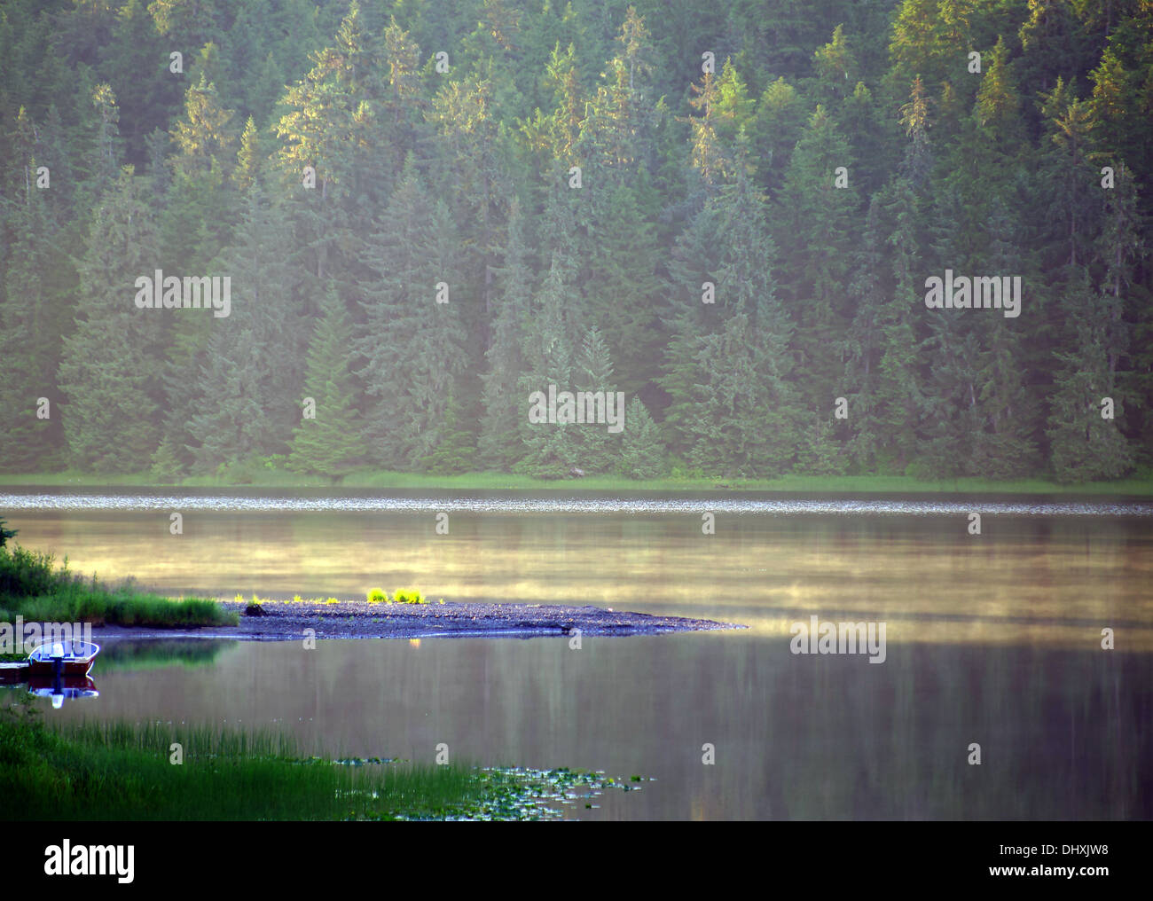 mendenhall lake - Stock Image