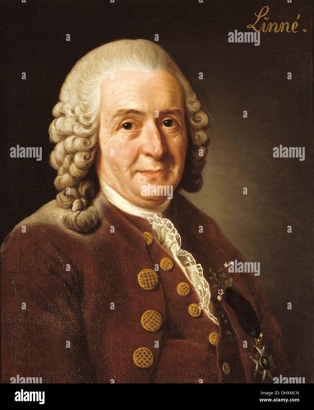 Carl Linnaeus (  Carl von Linné ) - by Alexander Roslin, 1775 - Stock Image