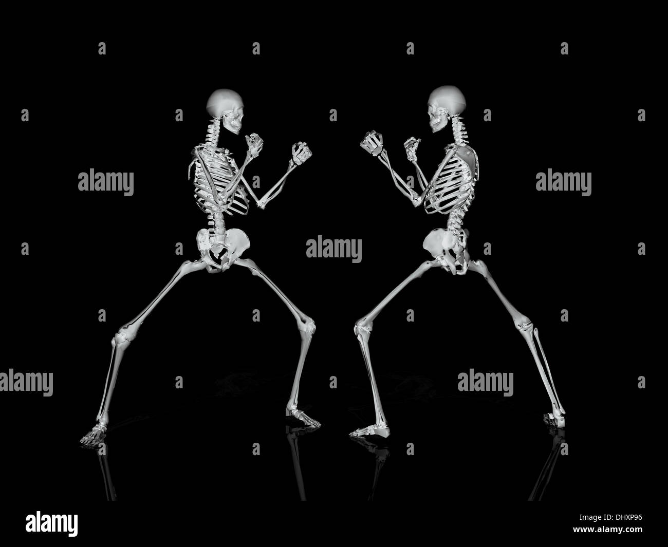 3D skeleton - Stock Image