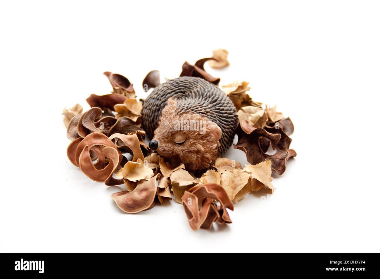 Hedgehog figure with potpourri - Stock Image
