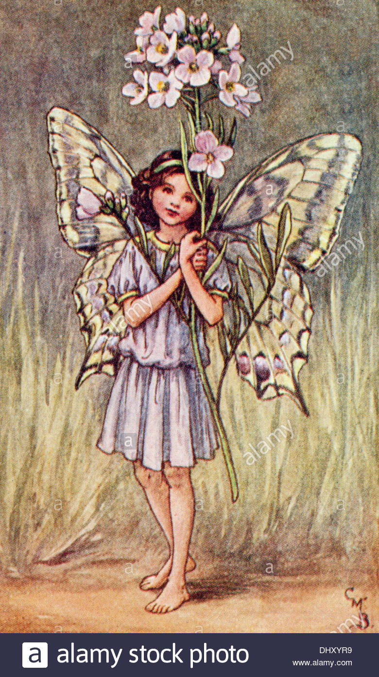 Flower Fairies Illustration by Cicely Mary Barker - The Smock Fairy, 1923 - Stock Image