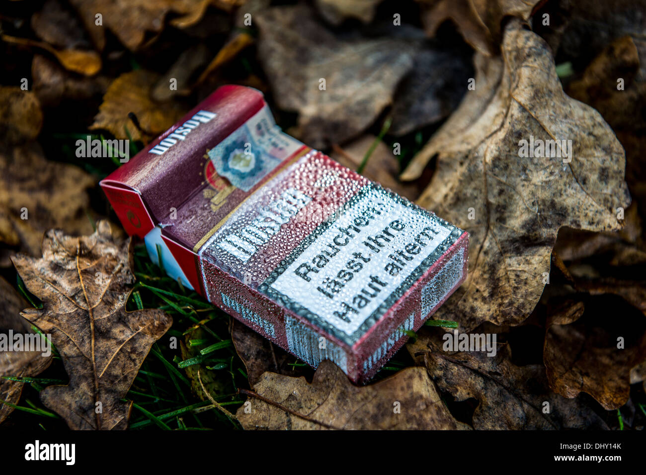 Discarded Cigarette Packet on Autumn Leaves - Stock Image