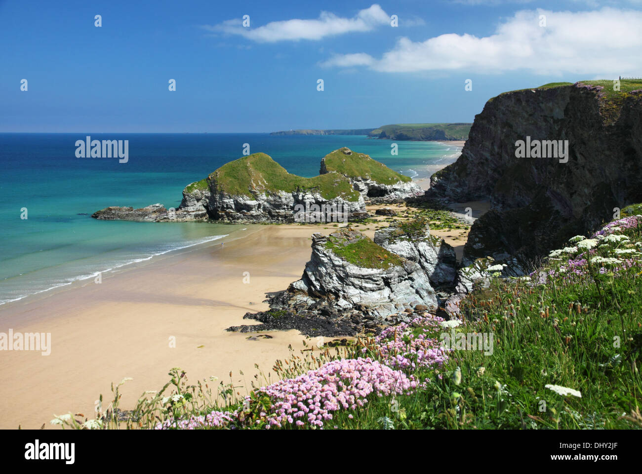 Pink thrift and a wide sandy beach with turquoise sea and cliffs. - Stock Image