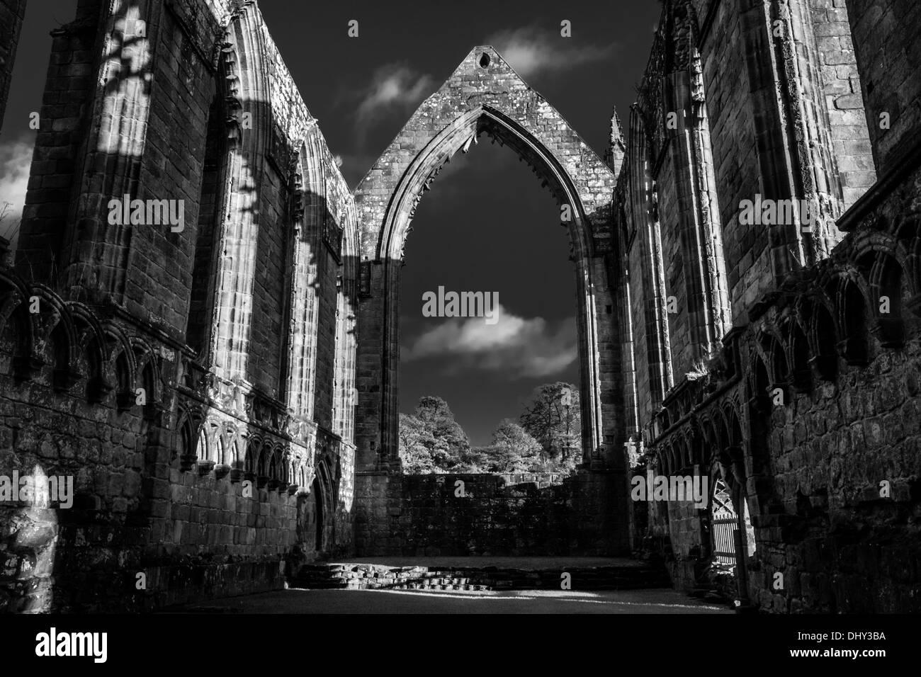 Bolton Abbey, Yorkshire, England, UK - Stock Image
